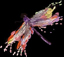variegatagal